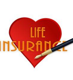 Jim Brown, State Farm Insurance